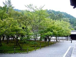 20070927南禅寺(その5)