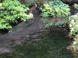 20070927南禅寺(その17)