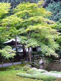 20070927南禅寺(その18)