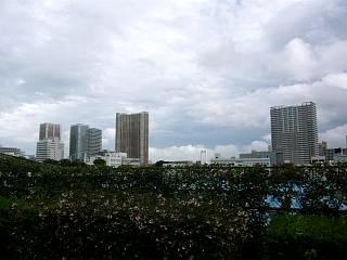 20111012散歩