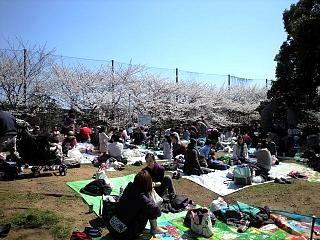 20120408平和公園(その4)