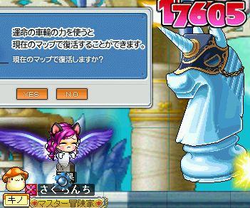 11_20100520214303.jpg