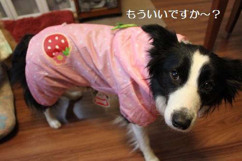 イチゴ姫2
