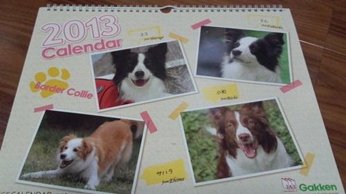 ボーダーコリーカレンダー