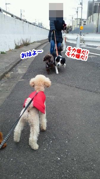 モカ雄目線 2