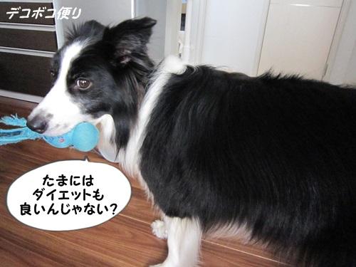 20140922思わぬダイエット5