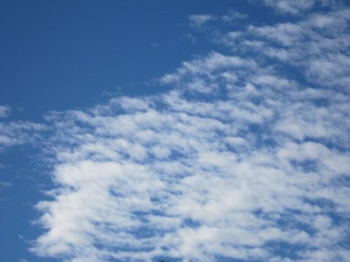 ピカピカの空