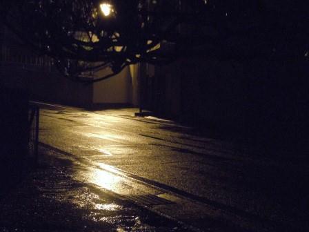 未明の春雨(2012-04-22 04:30)