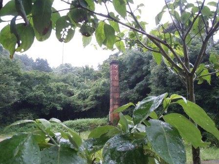 雨の中の煙突3(2012-06-30)