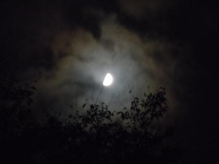 上弦の月(2012-09-23)