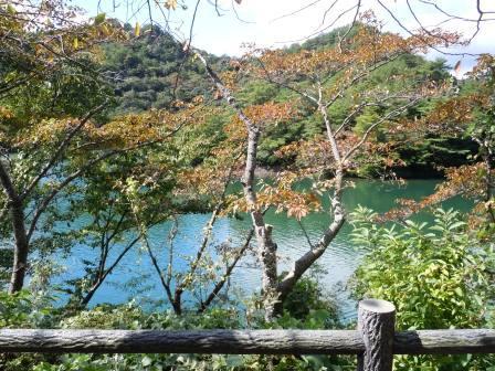 高浜年尾句碑4(2012-10-0)