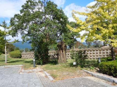 歴史と文化の森公園1(2012-10-04)