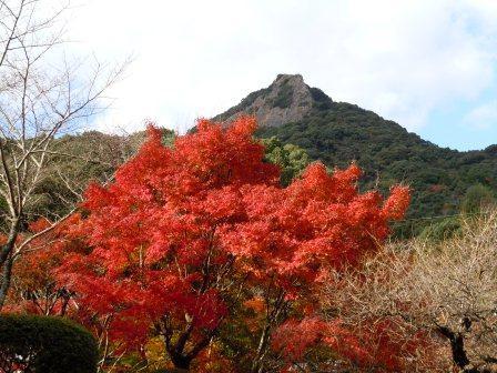 泉山磁石場の紅葉1