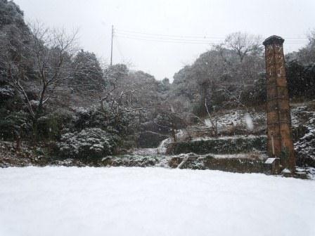 雪の朝(2013-01-01)1