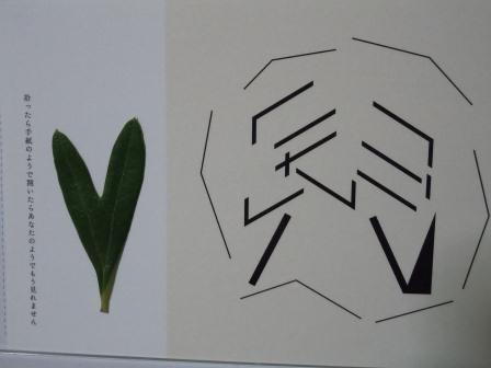 ハート型のオリーブの葉2