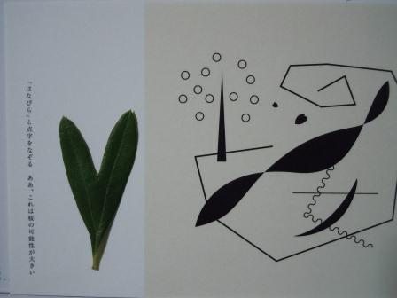 ハート型のオリーブの葉7
