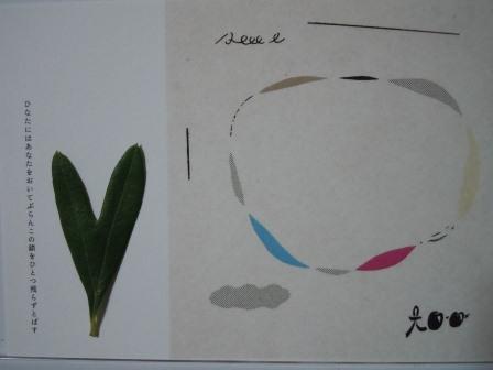 ハート型のオリーブの葉9