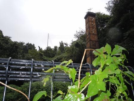 雨の日曜日10(2011-09-04)