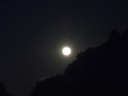 中秋の月1(2011-09-13)