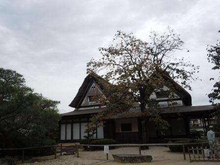 柿右衛門窯 柿の木(2011-11-02)