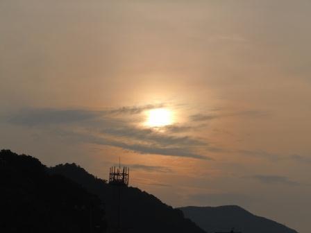 晩秋の太陽1(2011-11-27)
