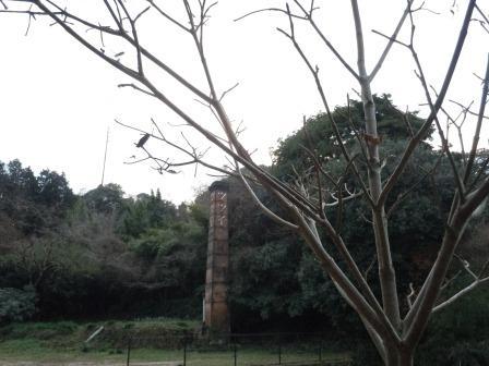 ハナミズキと煙突1(2011-12-29)