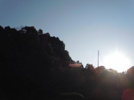 やわらかな一日(2012-01-21)