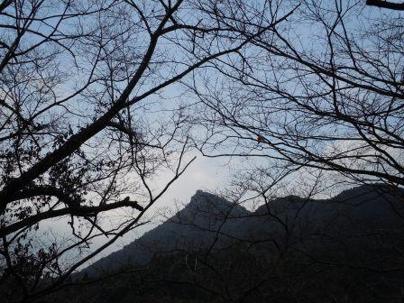 石場相撲場から見た英山1(2012-01-28)