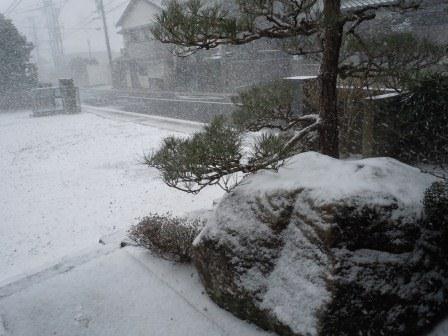 雪景色1(2012-02-02)