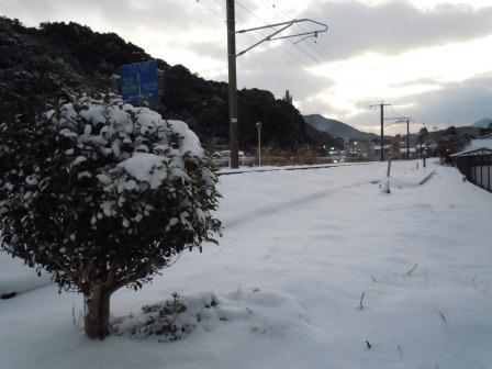 雪景色3(2012-02-02)