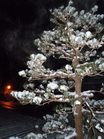深夜の雪華3(2012-02-03)