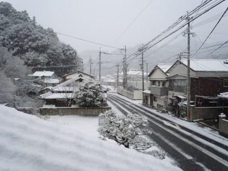 雪の朝1(2012-02-18)