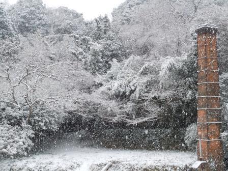 雪の朝2(2012-02-18)