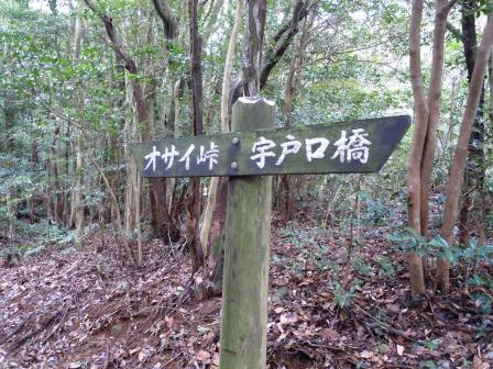 オサイ観音への山道3(2012-02-23)