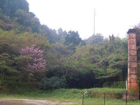 小雨に煙る朝(2012-04-20)
