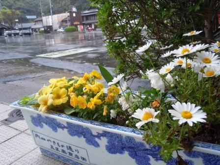 職場の花壇1(2012-04-21)