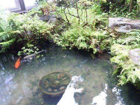 池1(2012-07-01)