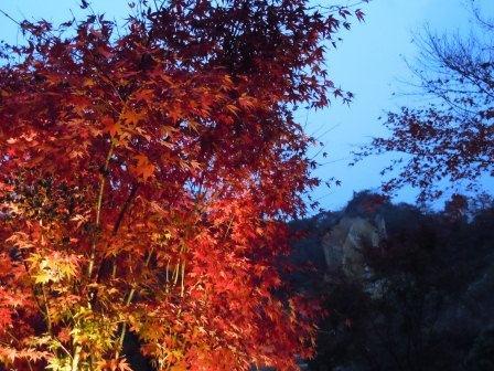泉山磁石場6(2012-11-21)