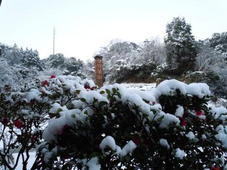雪の華2(2013‐01‐18)