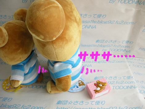 DSCN6435-s1.jpg