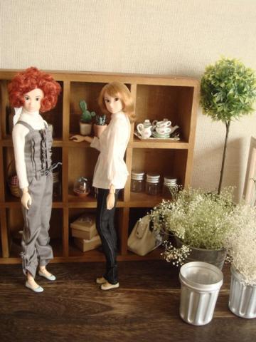 doll house22