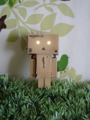 danbo amazon ver4