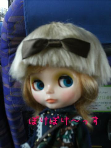 hatobus1-2.jpg