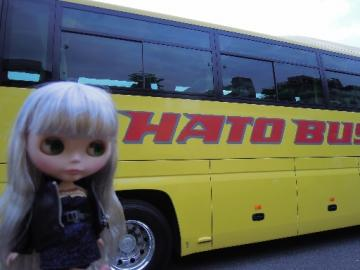 hatobus14-a7.jpg