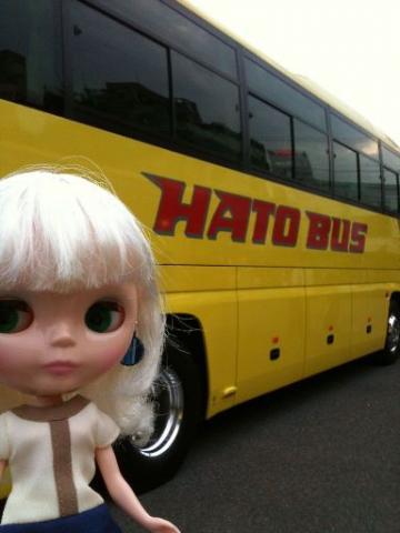 hatobus14-k.jpg