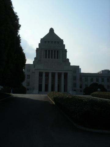 hatobus8.jpg