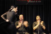 Madrid_Flamenco22.jpg
