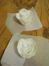 rose_mika04.jpg