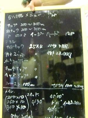20101229 009--satolog8--