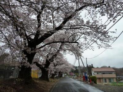 清春芸術村2